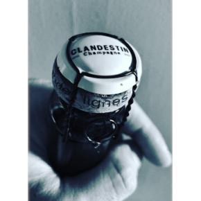 Champagne Clandestin